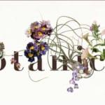 Botanicalmarket Vol.2